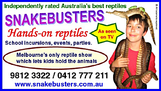 reptile shows